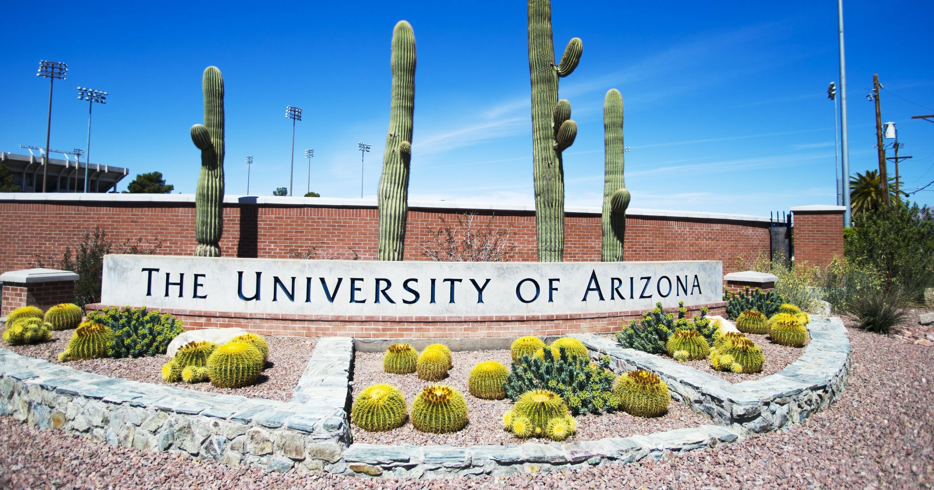 University of Arizona - Top 25 Most Affordable Accelerated Master's in Nursing Online for 2018